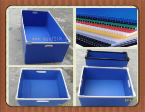 Canada Customized PP Plastic Hollow Packaging Crate with Colored Manufacturer
