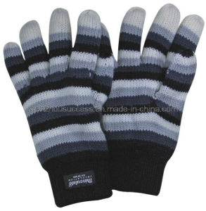 Knitted Gloves Sh12-2g008 pictures & photos
