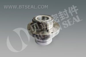 Mechanical Seal for Paper Mill Seal (BS570) pictures & photos