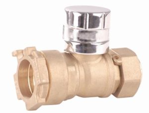 Brass Magnetic Ball Valve (YED-A2004)