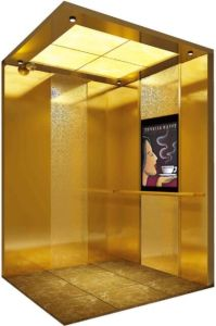 Italy Technology Hydraulic Home Villa Elevator/Lift (RLS-236) pictures & photos