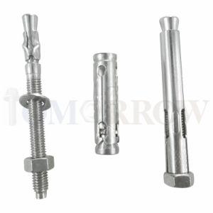 High Quality Stainless Steel 304/316 Wedge Anchor/ Through Bolt/ Expansion Bolt/ Anchor Bolt/ Tam Anchor/ Shell Bolt/ Sleeve Bolt/ Sleeve Anchor pictures & photos