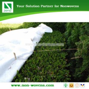 Agriculture Non-Woven Fabric pictures & photos