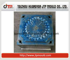 OEM Design 24 Cavities Cold Runner Spoon Mould pictures & photos