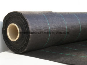 Ground Cover 100GSM Black Color for Agriculture pictures & photos