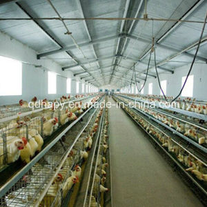 Steel Structure Prefabricated Layer Chicken House pictures & photos