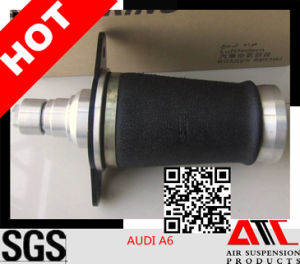 Best Sales Pneumatic Spring for Audi A6 USA Style Rear pictures & photos