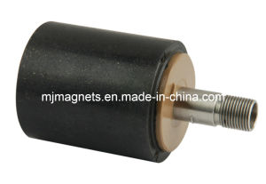 Plastic Injection Molded Permanent Magnet with NdFeB+PPS