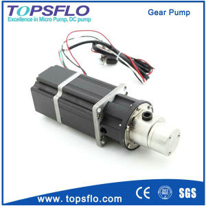 High Pressure Gear Pump Chemical Pump Magnetic Drive Oil Pump Electric Ink Pump pictures & photos