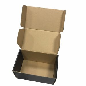 Custom Made Size Carton Shoe Box OEM pictures & photos