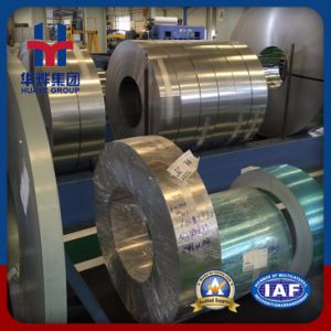 Well Polished Stainless Steel Strips pictures & photos