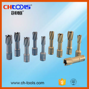 Tool Parts of Magnetic Drill Bit -Arbor (DJ) pictures & photos