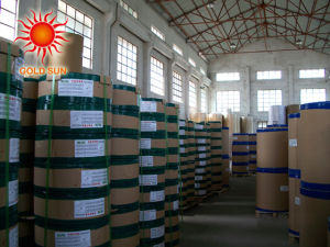 Widely Used Adhesive Thermal Label Paper Roll (TPL-013) pictures & photos