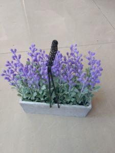 Artificial Flowers of Lavender Gu916215310 pictures & photos