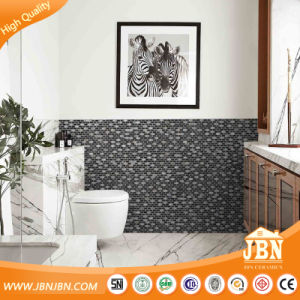 Hot Design Black Color Sea Shell, Stone, Glass Mosaic (M853002) pictures & photos
