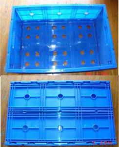 Foldable Crate Mould pictures & photos