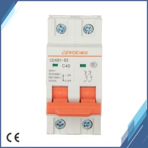 2p 440VAC Tripping Circuit Breaker 40A with Current Overload and Short Circuit Protection pictures & photos
