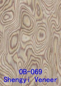 Reconstructed Wood Veneer Wild Burl (OAK Burl)