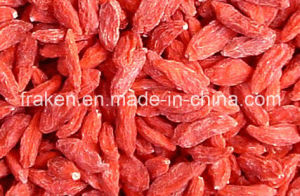 High Quality Dried Wolfberry / Goji Berries pictures & photos