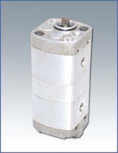 Two-Way Flow Gear Pump (CBTL)