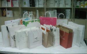 Shopping Bag/Paper Bag/Paper Shopping Bag pictures & photos