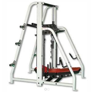 Fitness Equipment Rogers Athletic / PRO Vertical Leg Press (SF1-3033A) pictures & photos