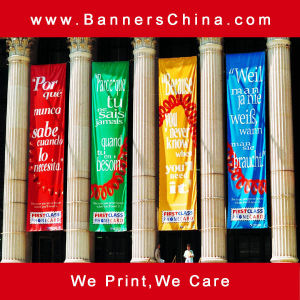 Digital Printing Hanging Flag Banner pictures & photos