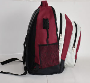 Wholesale Hockey Lacrosse Backpack for Sport pictures & photos