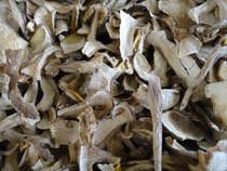Dried Boletus Edulis (A GRADE)