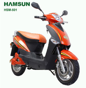 Electric Scooter (HSM-501)