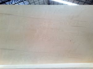 Natural Birch Plywood (BPLD-HT03D) pictures & photos