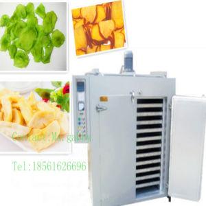 Mesh Belt Vegetable Dryer Machine / Food Dryer Machine pictures & photos