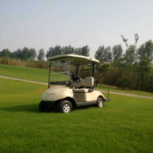 Prices Electric Golf Car