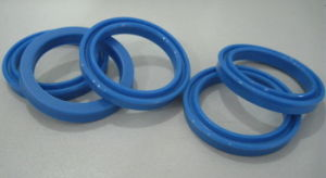 Sealing Hydraulic Sealing Pneumatic Sealing pictures & photos