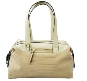 Hot Sell Ladies Tote Handbags (376C)