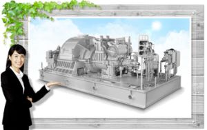 3000kw Back Presssure Steam Turbine Generator Set