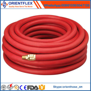 Rubber Smooth Air Hose with Brass Fittings pictures & photos