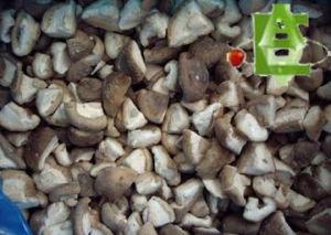 Frozen Shiitake Mushroom Quarter