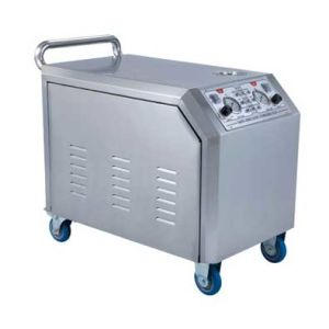 Electric Steam Pressure Washer Power with 2 Steam Gun Automotive Cleaning Machine