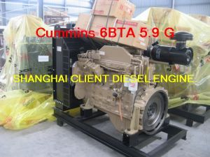 Cummins Engine for Genset 6CT8.3-G pictures & photos