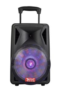 12 Inch New Arrivals Portable Rechargeable Big Power Portable Bluetooth Speaker with Trolley---F12-06 pictures & photos
