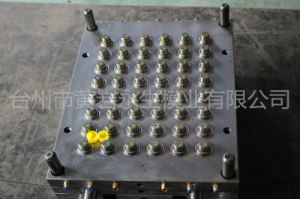 48 Cavities Thread 28mm Hot Runner Plastic Injection Cap Mold pictures & photos