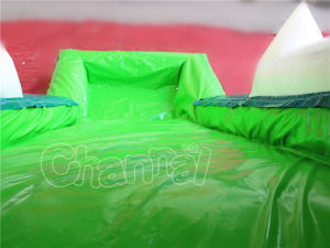 Crocodile Mouth Game Slide Inflatable Water Slide for Sale pictures & photos