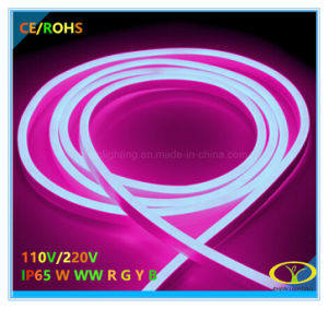 2835SMD IP65 RGB LED Neon Flex with Ce RoHS Certification pictures & photos