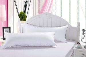 White Comfortablr Pillow pictures & photos