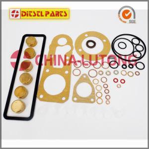 Repair Kits for Ve Pumps-Mechanical Pump Seal Kits pictures & photos