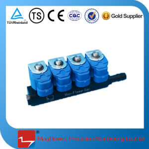 CNG Fuel Rail Injector (4 cylinder) pictures & photos