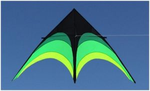 Grassland New Triangle Kite Customized Cheap Kite Promotion
