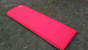 Outdoors Built-in Camp Relax Self Inflate Sleeping Mat Pad Bed pictures & photos