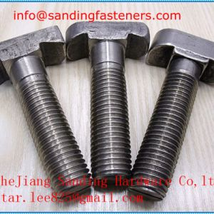 Stainless Steel A4 T Head Bolt pictures & photos